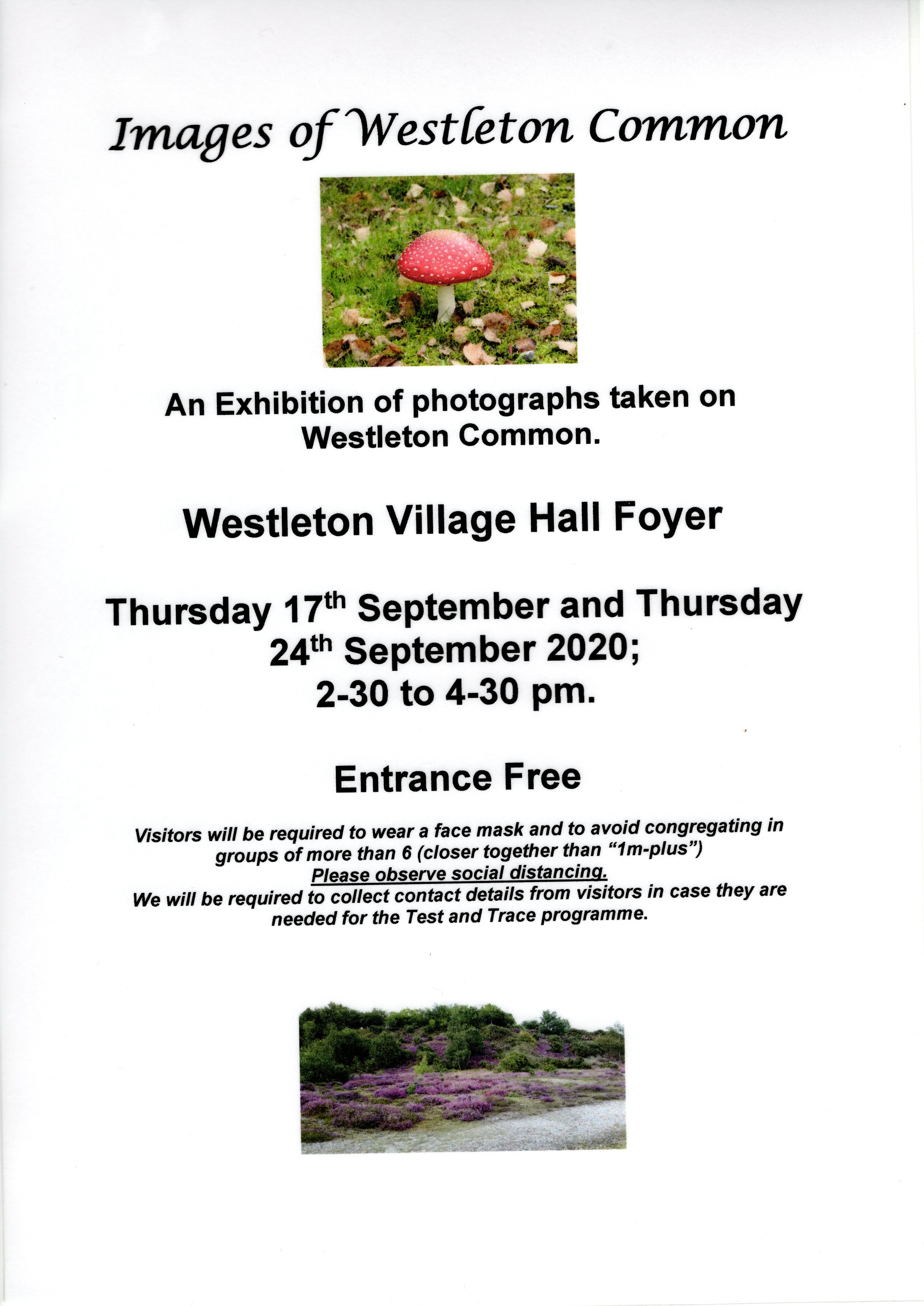"Images of Westleton Common  An Exhibition of photographs taken on Westleton Common.  Westleton Village Hall Foyer  Thursday 17th September and Thursday 24th September 2020; 2-30 to 4-30 pm.  Entrance Free  Visitors will be required to wear a face mask and to avoid congregating in groups of more than 6 (closer together than ""1m-plus"") Please observe social distancing. We will be required to collect contact details from visitors in case they are needed for the Test and Trace programme."