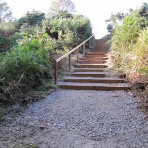 New Black Slough steps September 2015